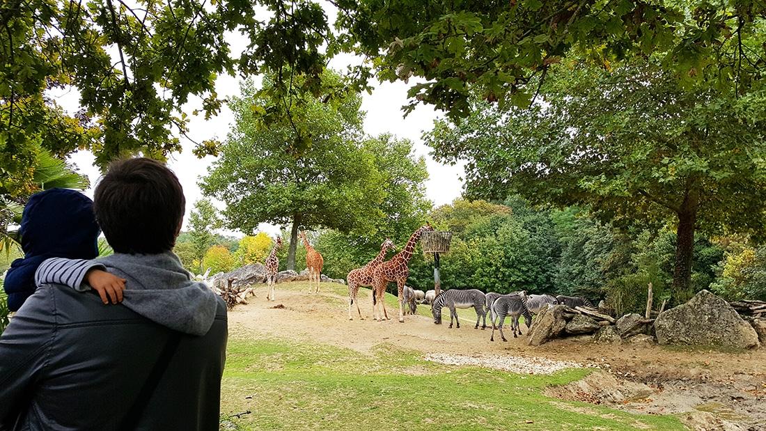 Parc animaliers