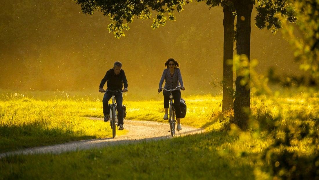 Randonnée à vélo autour de Chenonceaux