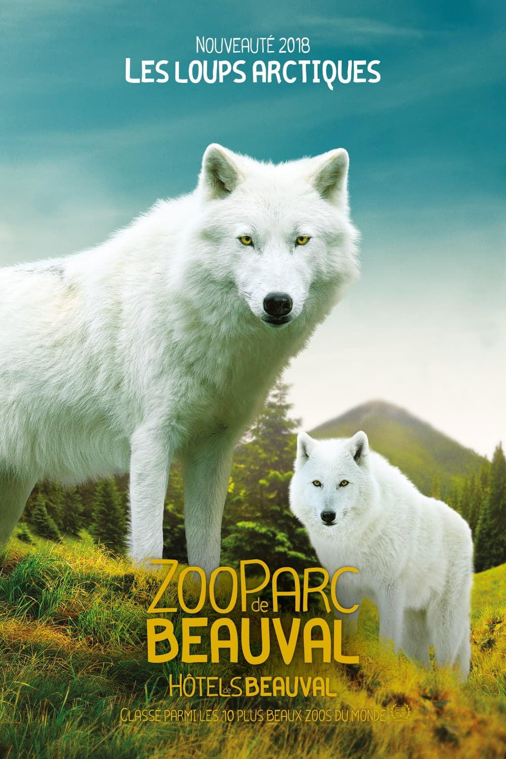Loup articques, Zoo de Beauval