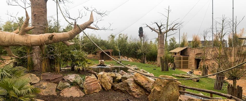 Zoo de Beauval, Saint Aignan