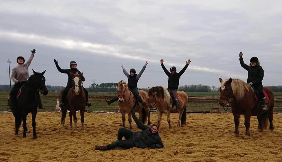 Cours de cheval - Les Ecuries la Clé des Champs