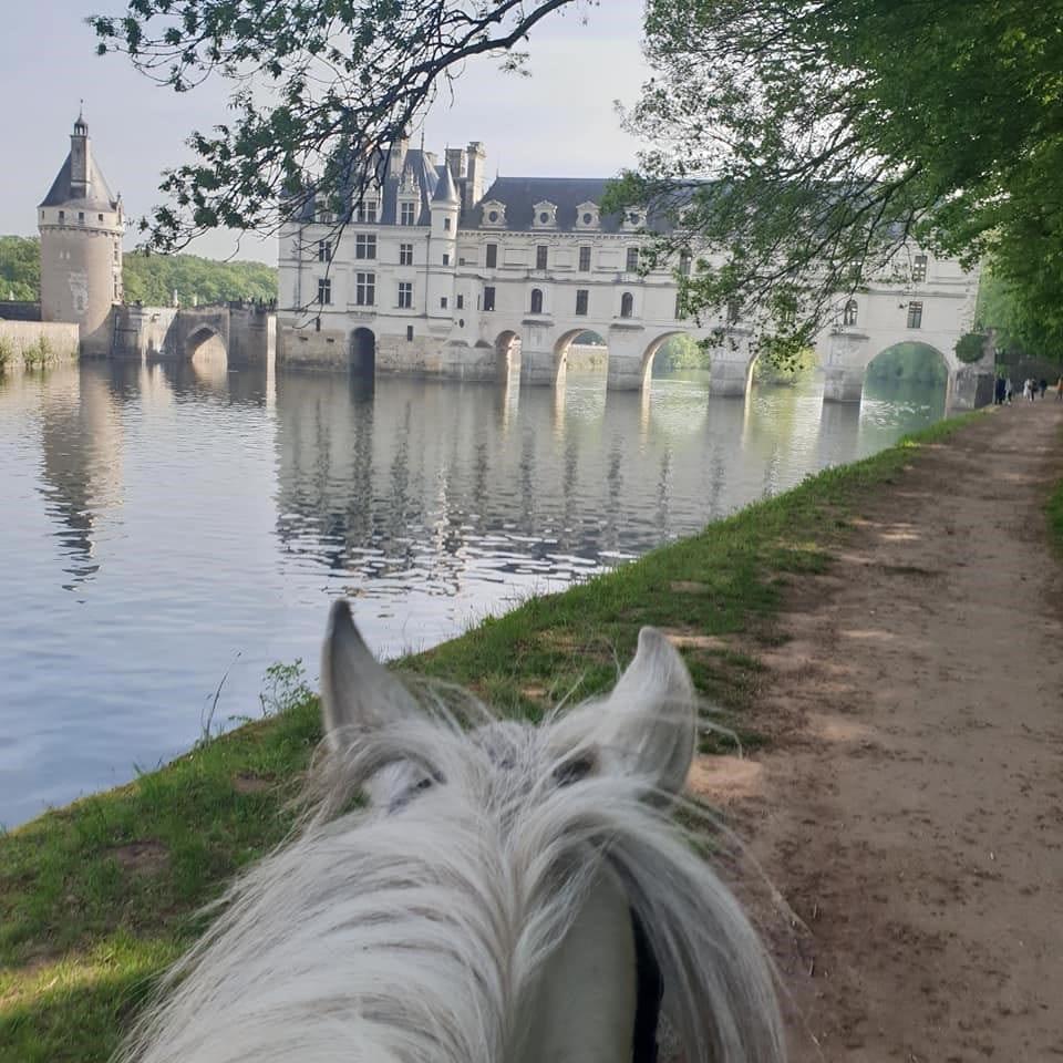 Château de Chenonceau en balade à cheval - Les Ecuries la Clé des Champs