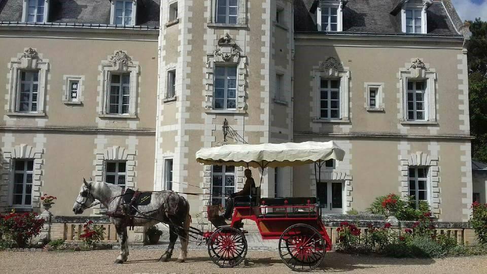 Promenade en attelage - Les Ecuries la Clé des Champs